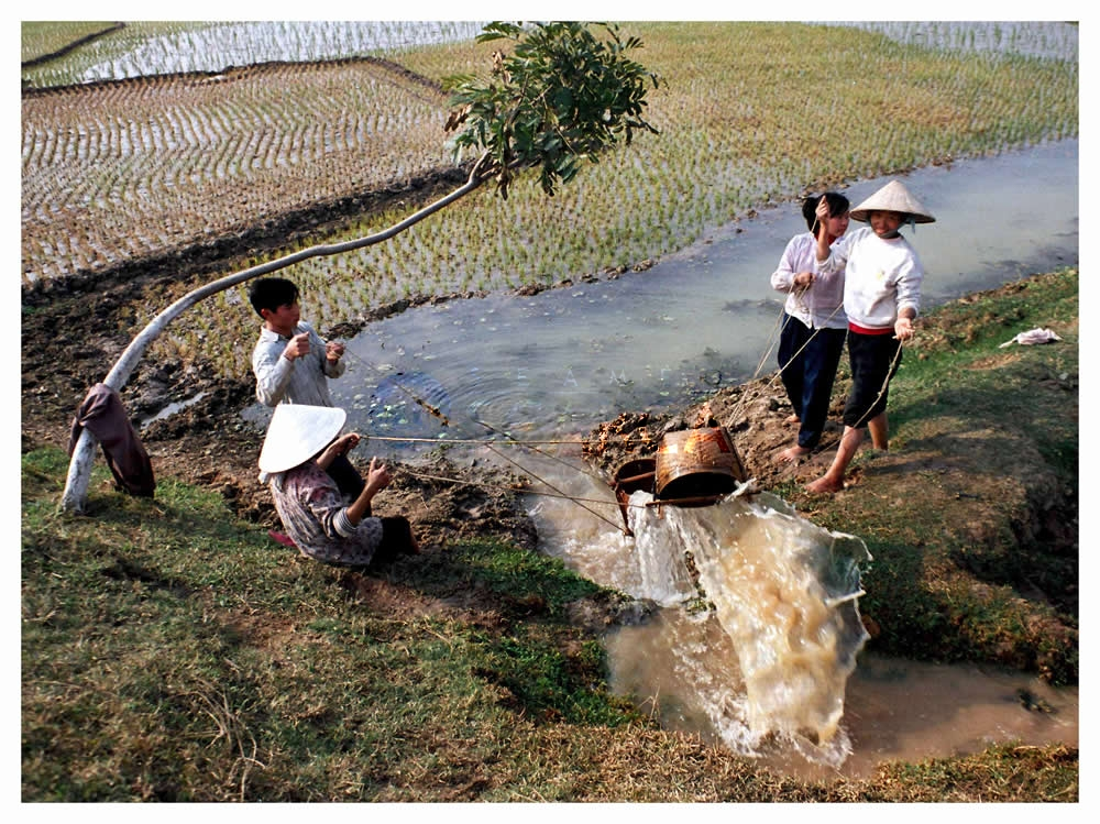04   Bring water to field   Anh Tuan